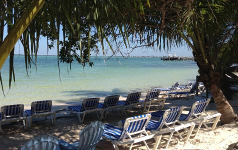 The Hilton Key Largo Hotel beach where students had a chance to relax and enjoy the sunshine.