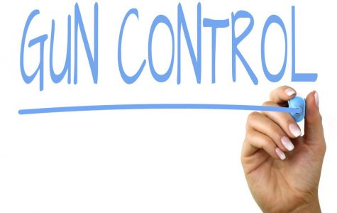 School community gives opinions on gun control