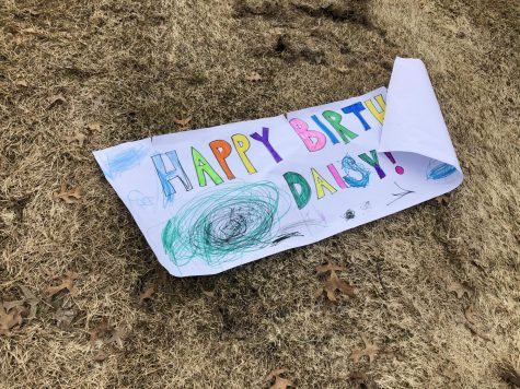 A neighbor friend made this sign for Daisy.